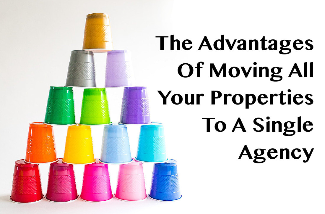 advantages of moving property portfolio to a single property management agency - Carnelian Property Management Newcastle
